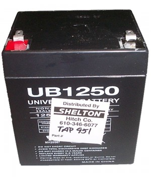 12 Volt Sealed Rechargeable Gel-Cel Battery